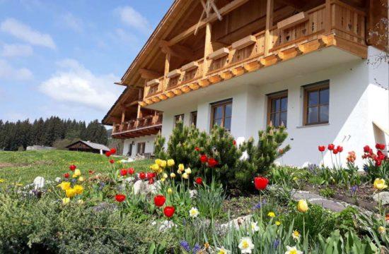 lutzerhof-taisten-welsberg-suedtirol (15)