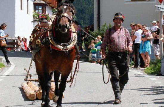 lutzerhof-taisten-welsberg-suedtirol (60)