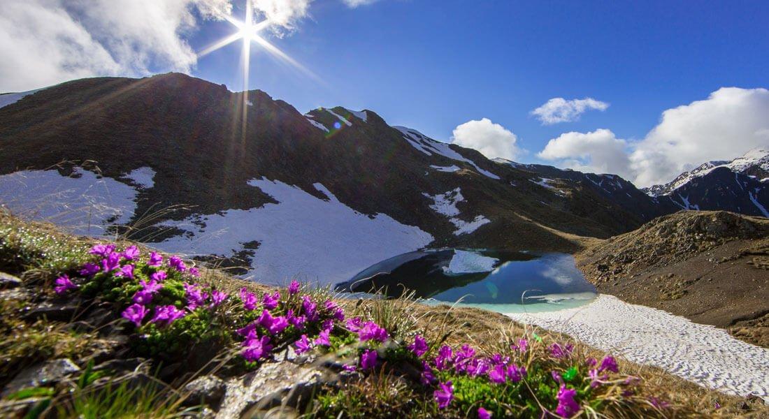 Frühlingserwachen - Südtirol von seiner schönsten Seite