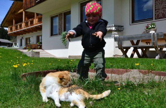 wanderurlaub-gsieser-tal (3)